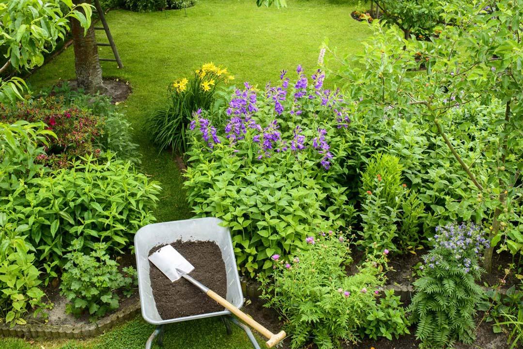 Gartengestaltung Sachsen-Anhalt