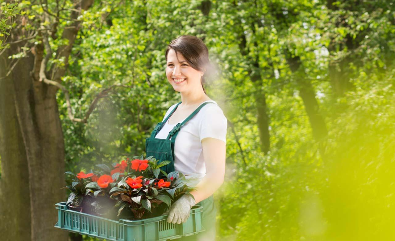 Gartenpflege Bonn Nordrhein-Westfalen