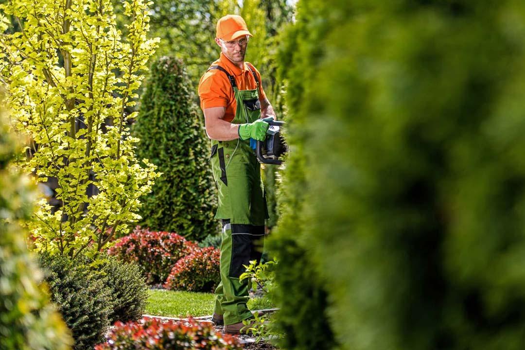 Gartenpflege Brandenburg