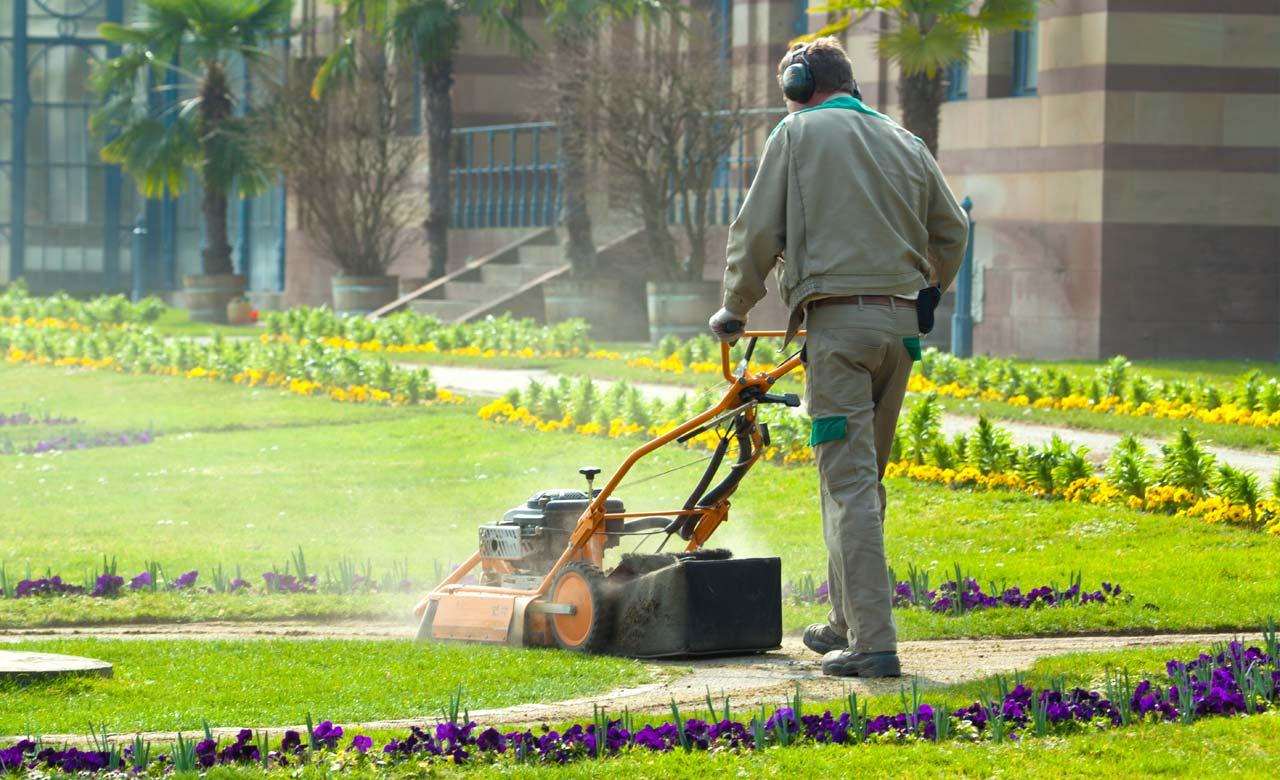 Gartenpflege Duisburg Nordrhein-Westfalen