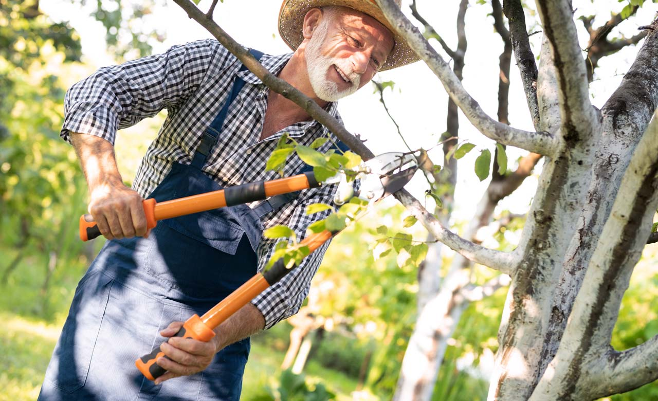 Gartenpflege Kleve Nordrhein-Westfalen
