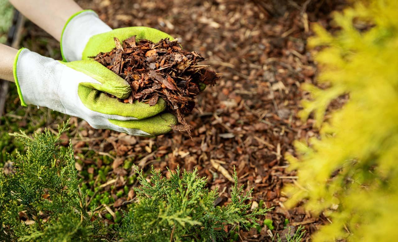 Gartenpflege Kreuztal Nordrhein-Westfalen