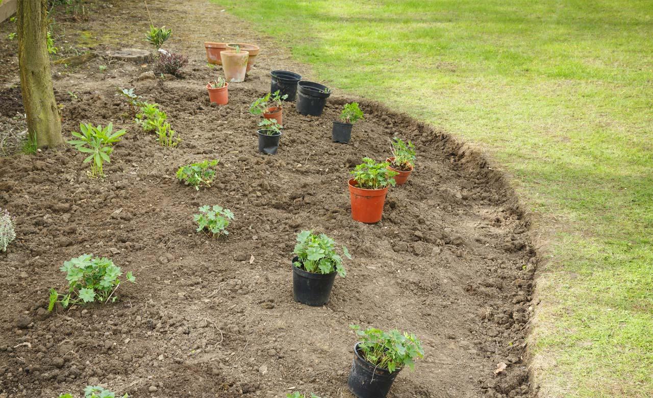 Gartenpflege Lehrte Niedersachsen