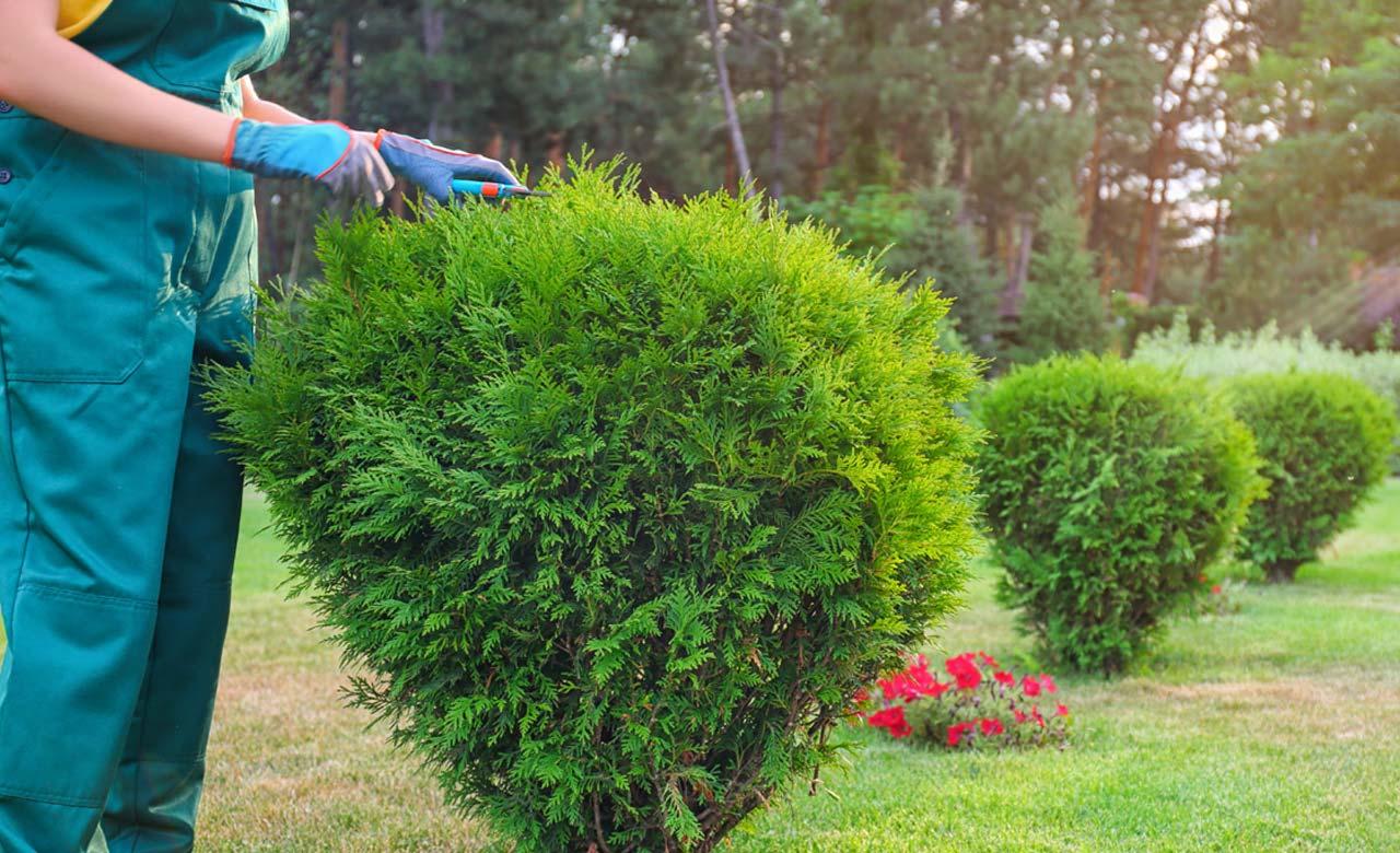 Gartenpflege Lünen Nordrhein-Westfalen