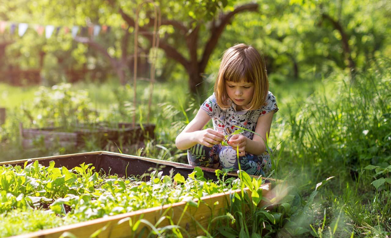 Garten Hennef Nordrhein-Westfalen