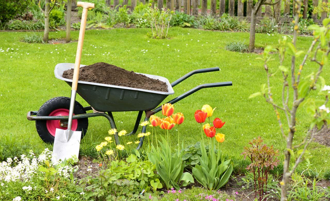Gartenbauer Fürth Bayern