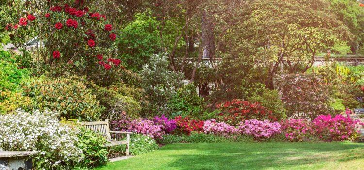 Gartengestaltung Bad Homburg Hessen