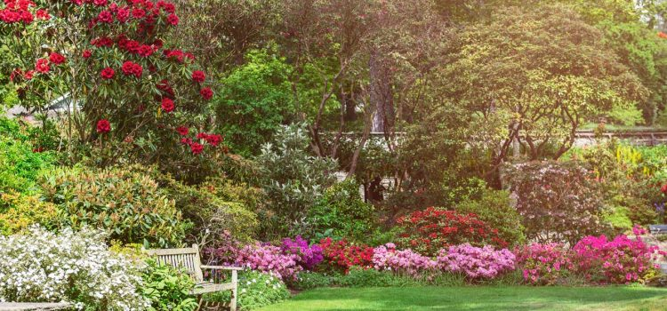 Gartengestaltung Bad Kissingen Bayern