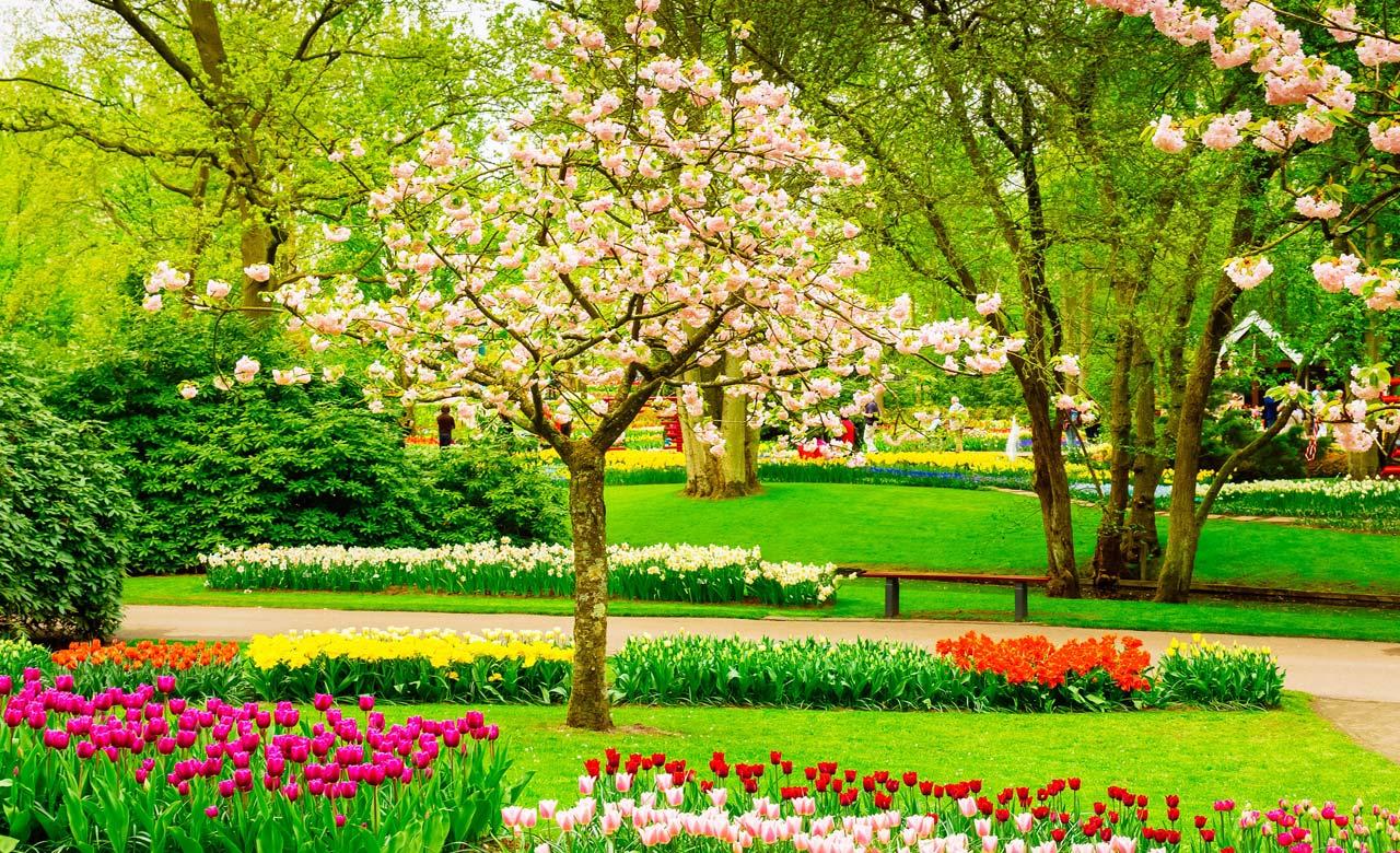 Gartengestaltung Blieskastel Saarland