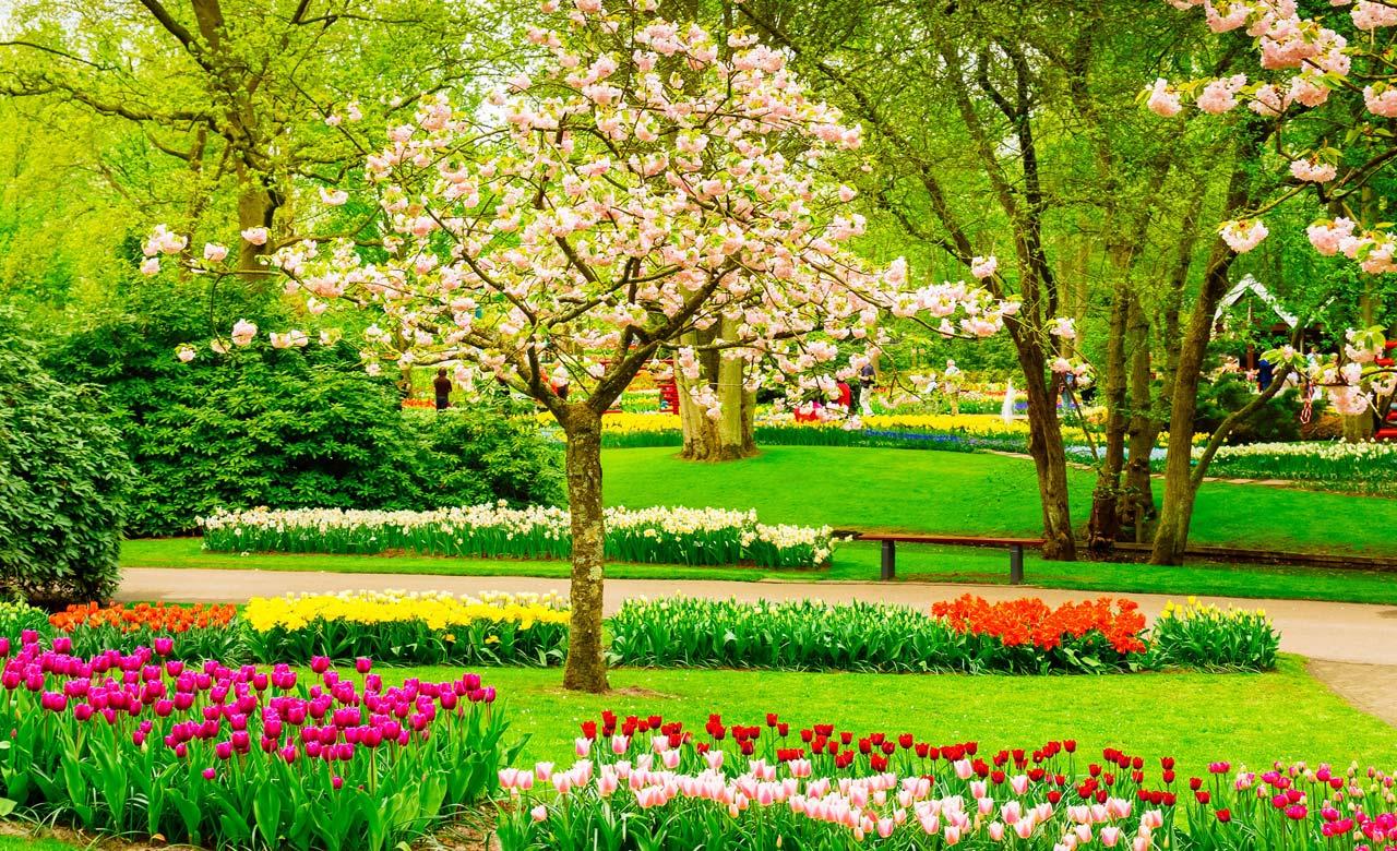 Gartengestaltung Bretten Baden-Württemberg