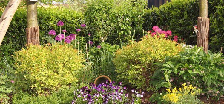 Gartengestaltung Chemnitz Sachsen