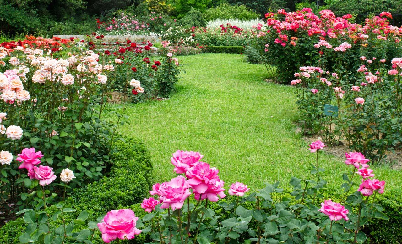 Gartengestaltung Edewecht Niedersachsen