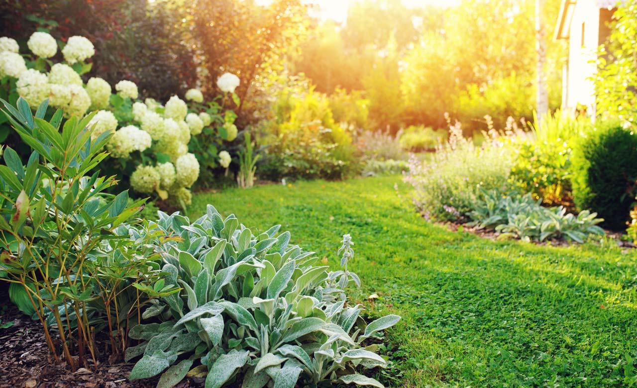 Gartengestaltung Eschweiler Nordrhein-Westfalen
