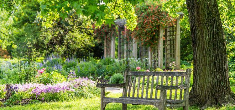 Gartengestaltung Friesoythe Niedersachsen