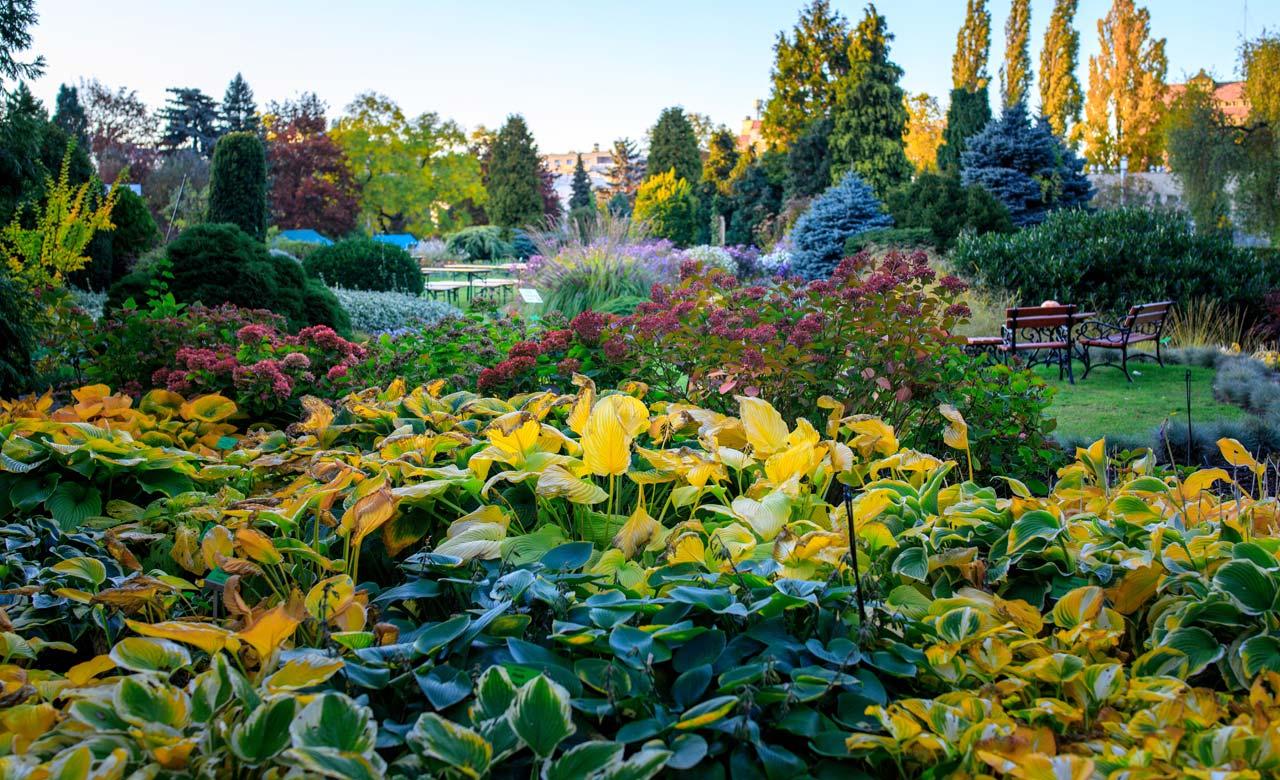 Gartengestaltung Fulda Hessen