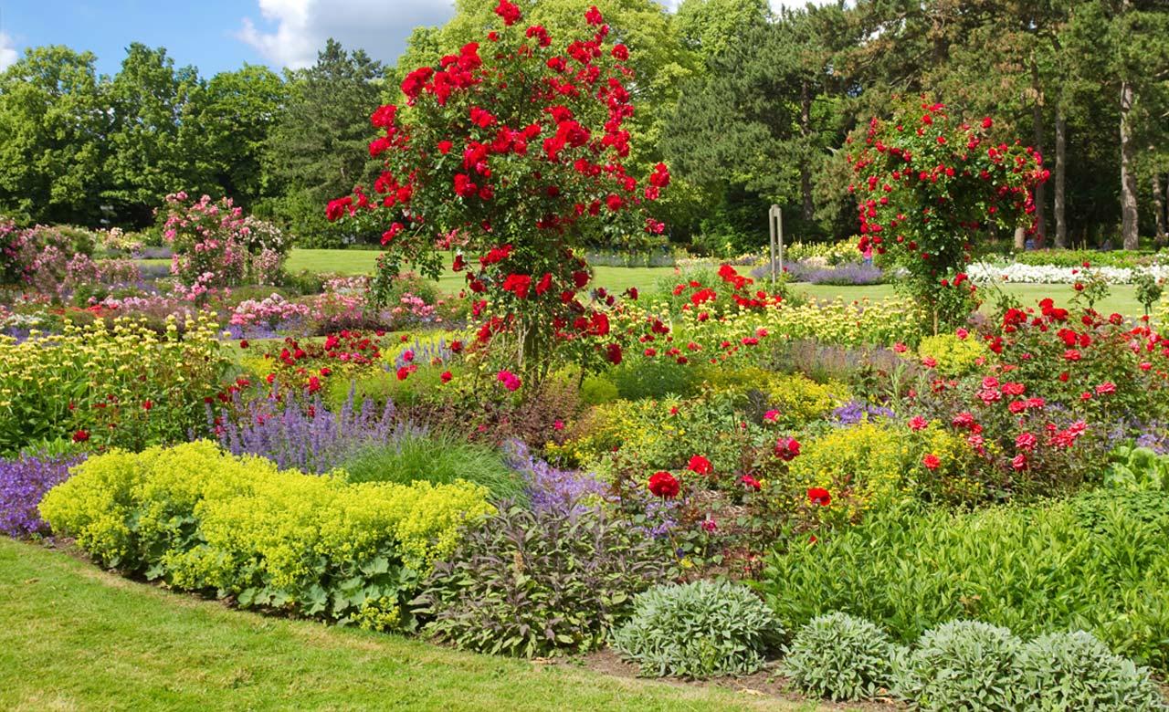 Gartengestaltung Gronau Nordrhein-Westfalen
