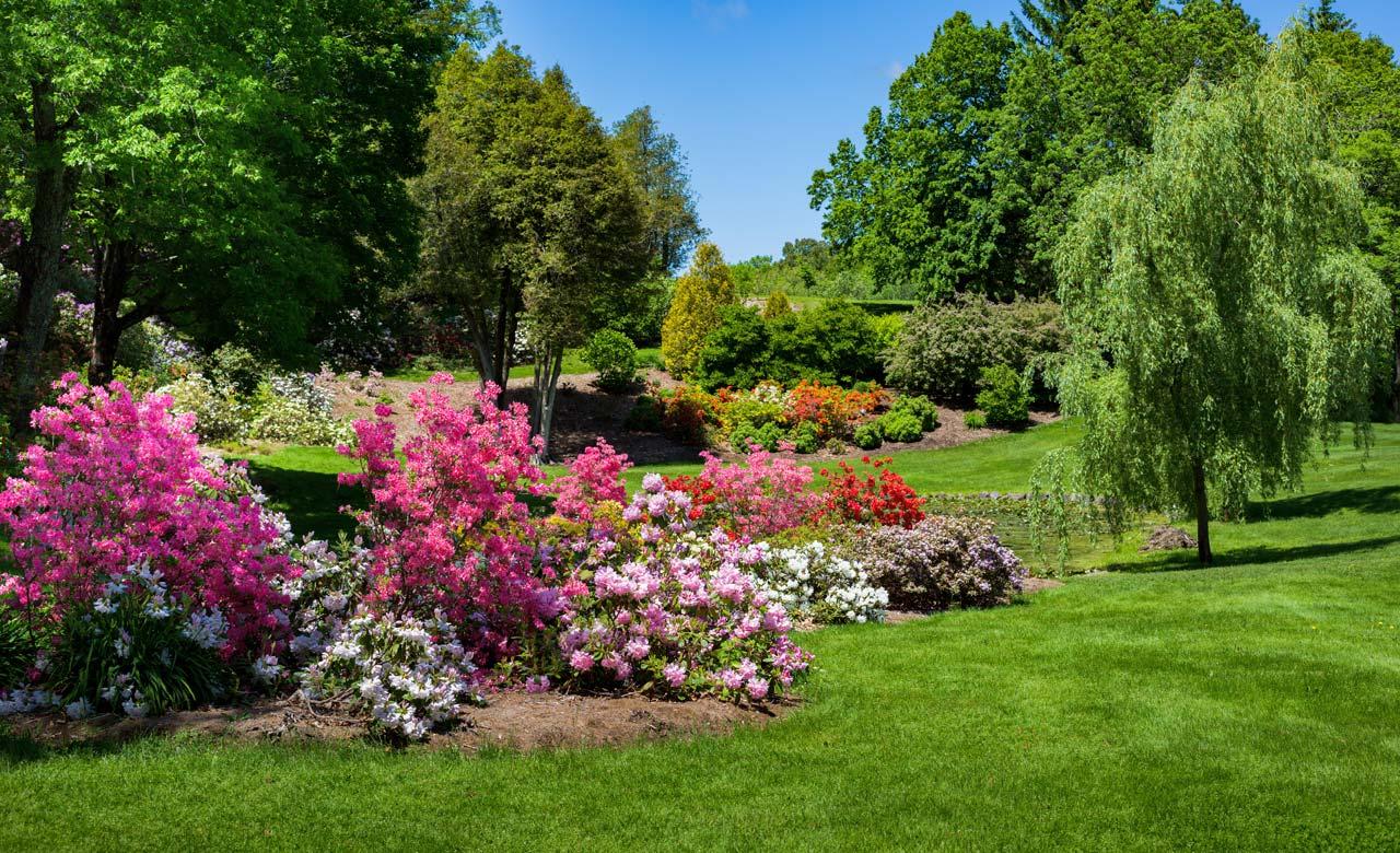 Gartengestaltung Groß-Gerau Hessen