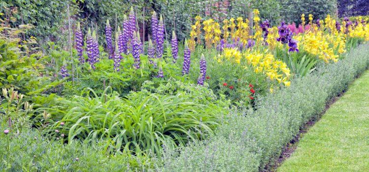 Gartengestaltung Haßloch Rheinland-Pfalz