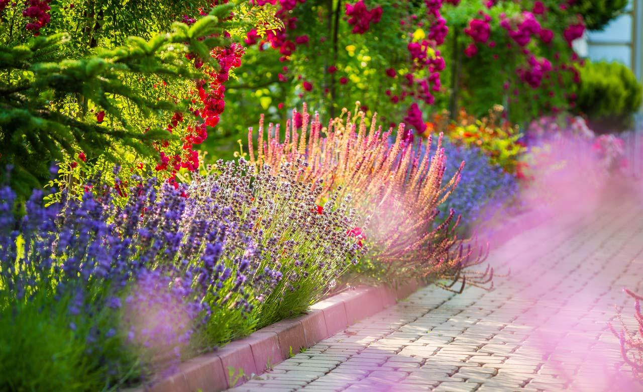 Gartengestaltung Hennef Nordrhein-Westfalen