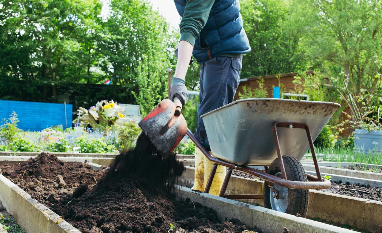 Gartenpflege Bad Homburg Hessen