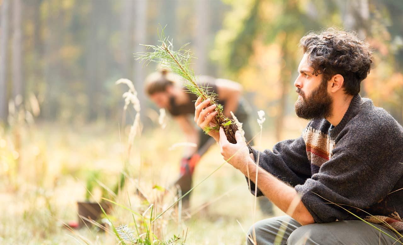 Gartenpflege Herten Nordrhein-Westfalen
