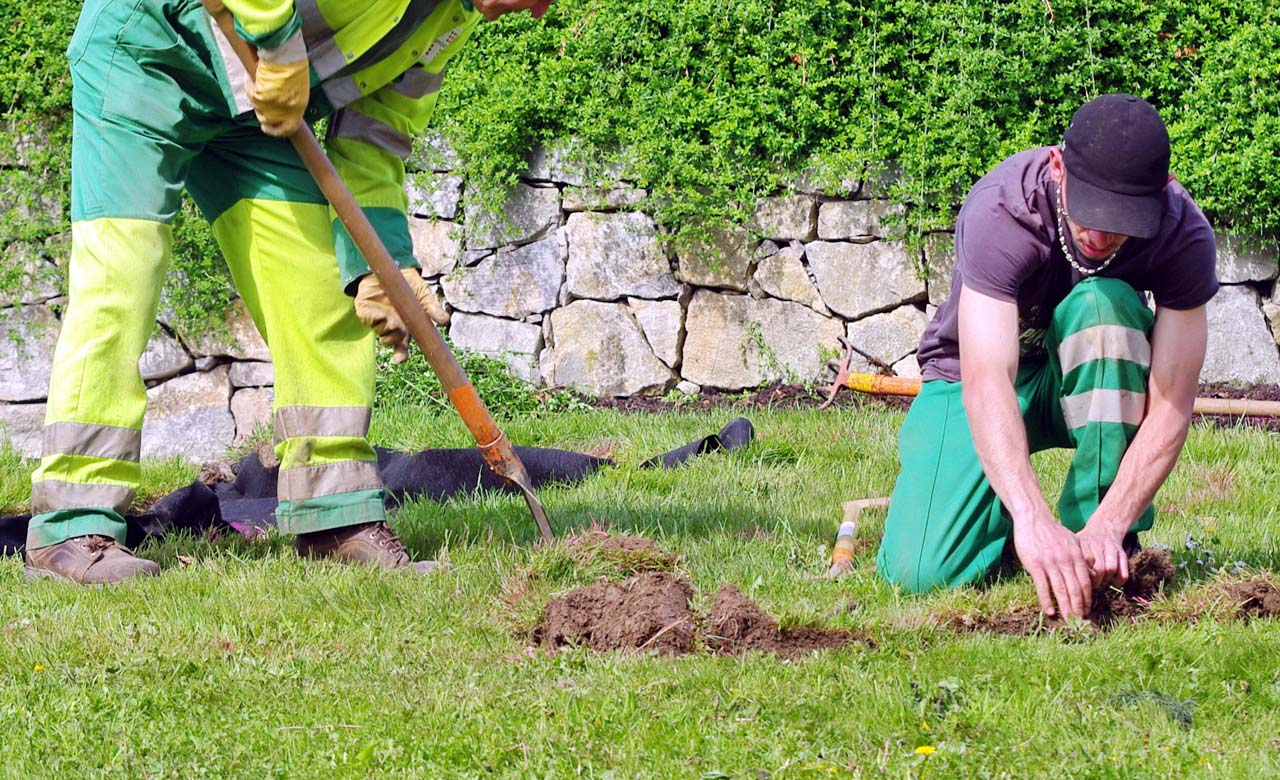 Gartenbauer Ilsede Niedersachsen