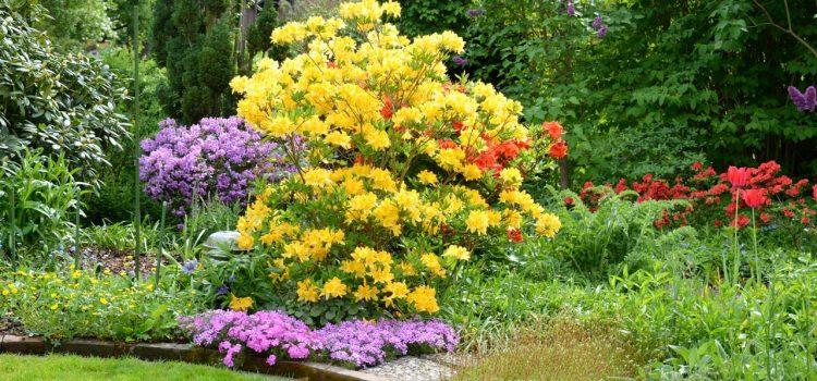 Gartengestaltung Aichach Bayern