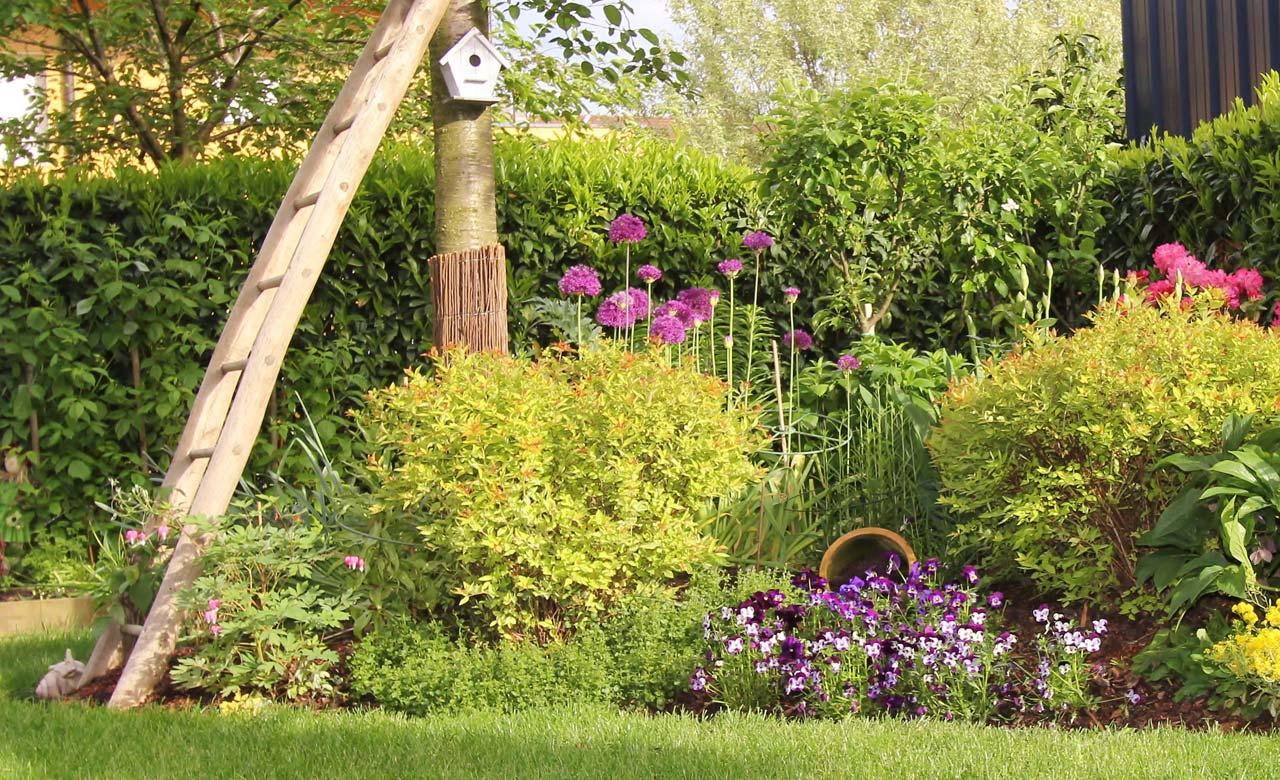 Gartengestaltung Bad Hersfeld Hessen