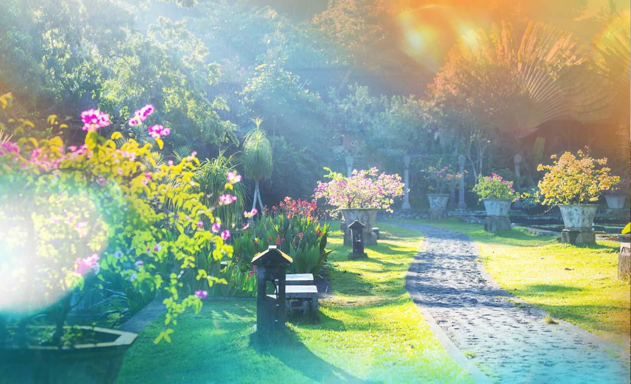 Gartengestaltung Bad Vilbel Hessen