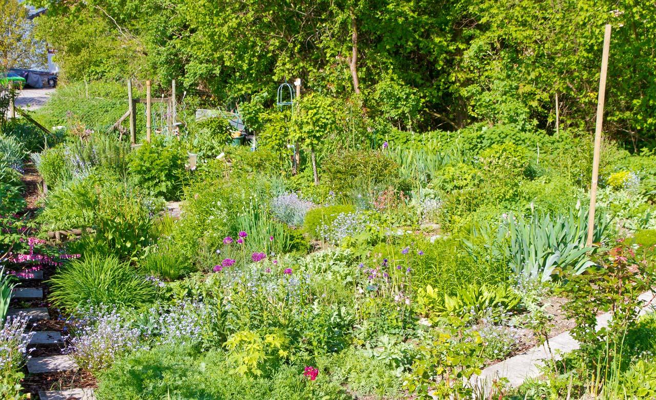 Gartengestaltung Bünde Nordrhein-Westfalen