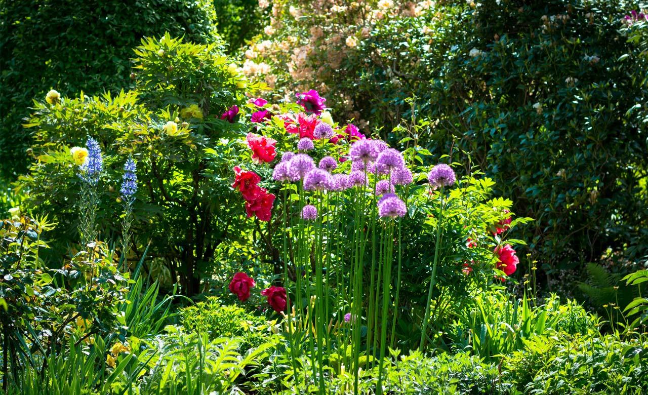 Gartengestaltung Frechen Nordrhein-Westfalen