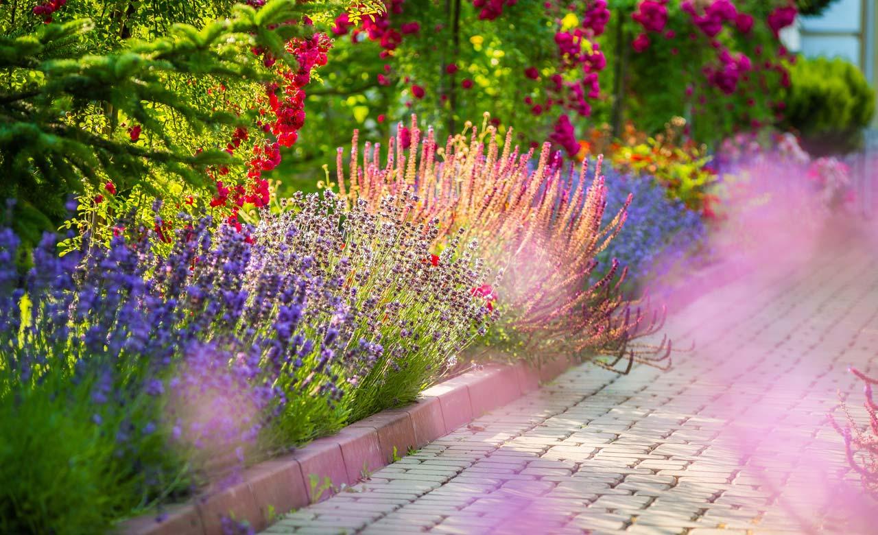 Gartengestaltung Gardelegen Sachsen-Anhalt