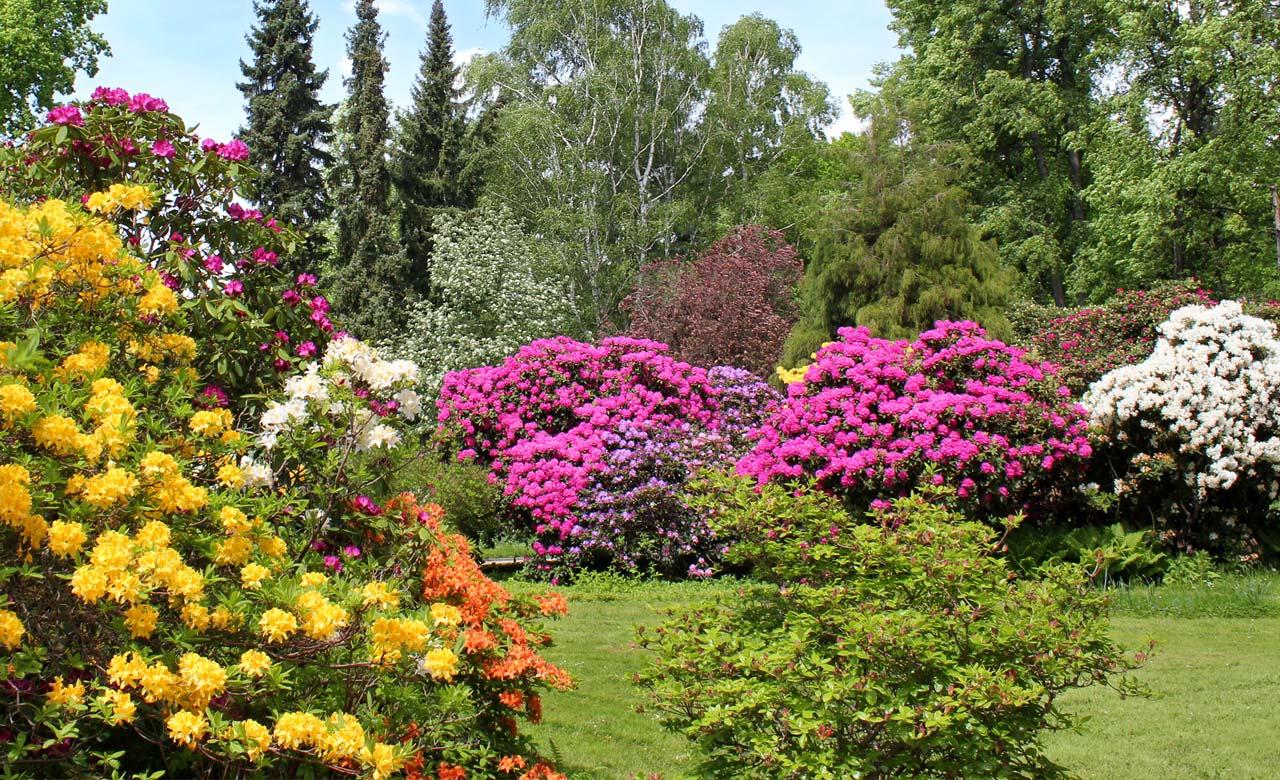Gartengestaltung Gelsenkirchen Nordrhein-Westfalen