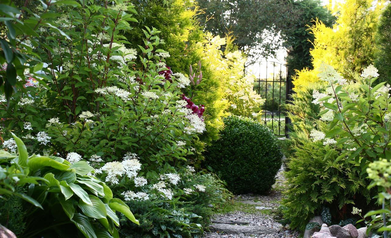 Gartengestaltung Hildesheim Niedersachsen