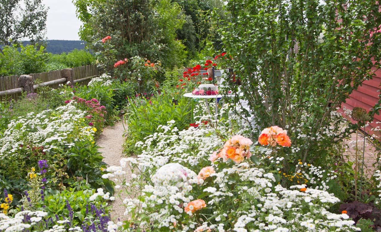 Gartengestaltung Ludwigshafen Rheinland-Pfalz