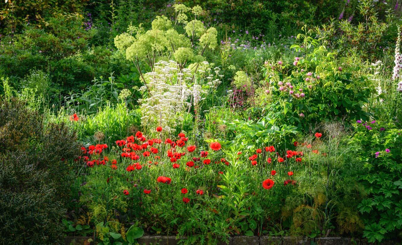 Gartengestaltung Neuss Nordrhein-Westfalen
