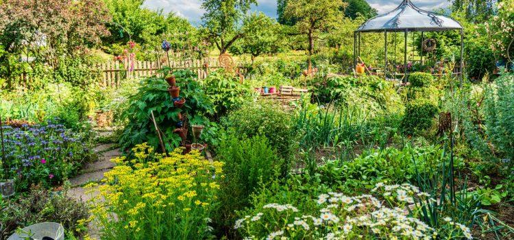 Gartengestaltung Pforzheim Baden-Württemberg