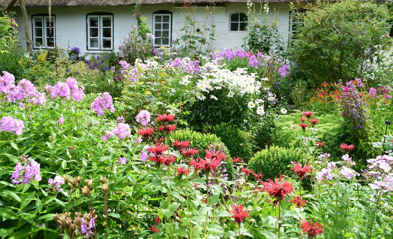 Gartengestaltung Rostock Mecklenburg-Vorpommern