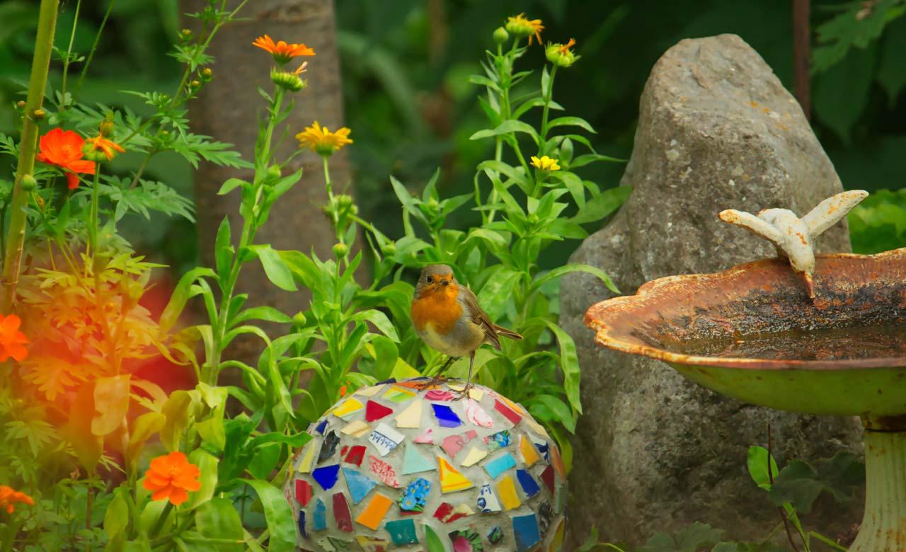 Gartengestaltung Würzburg Bayern