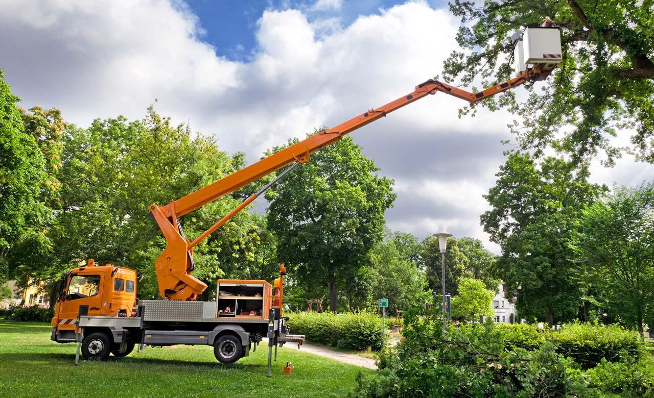 Gartenpflege Aachen Nordrhein-Westfalen