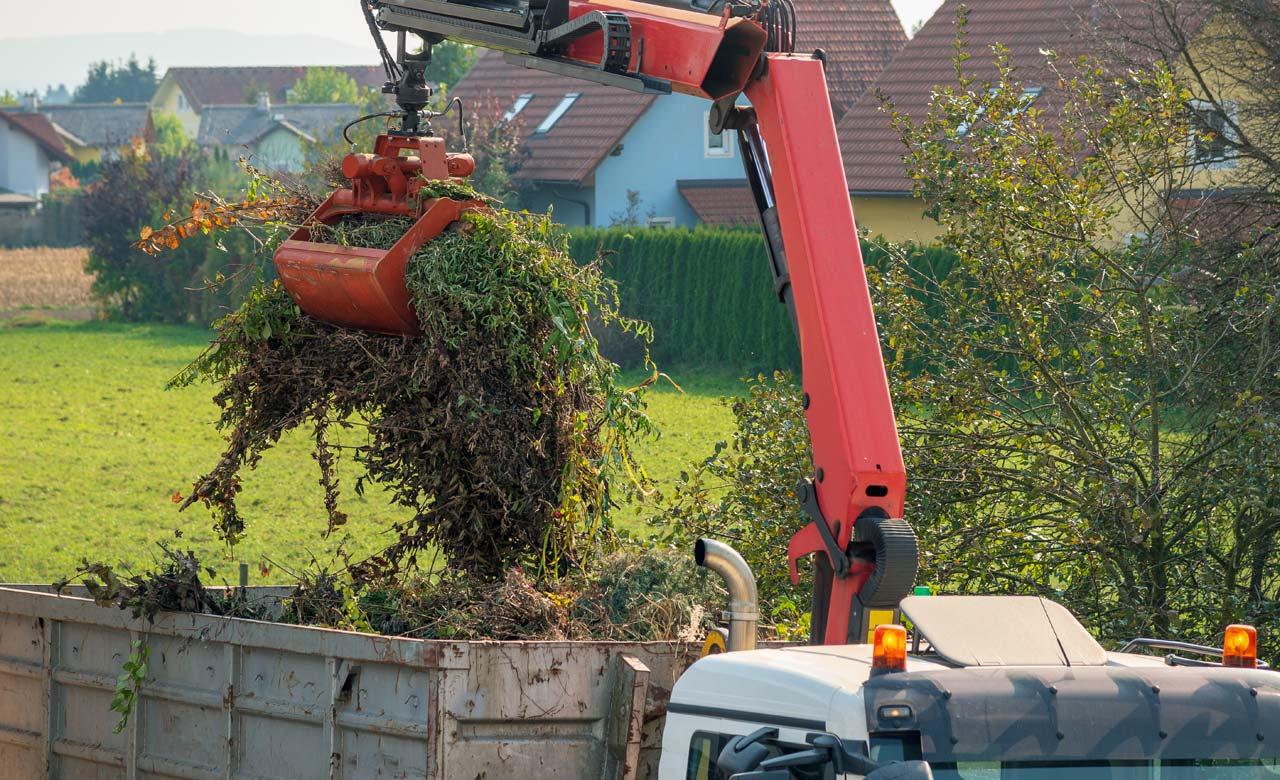 Gartenpflege Bensheim Hessen