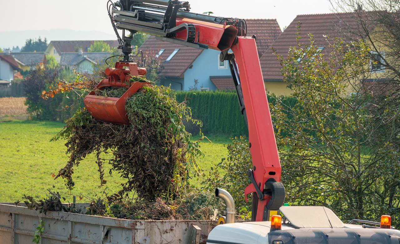 Gartenpflege Calw Baden-Württemberg