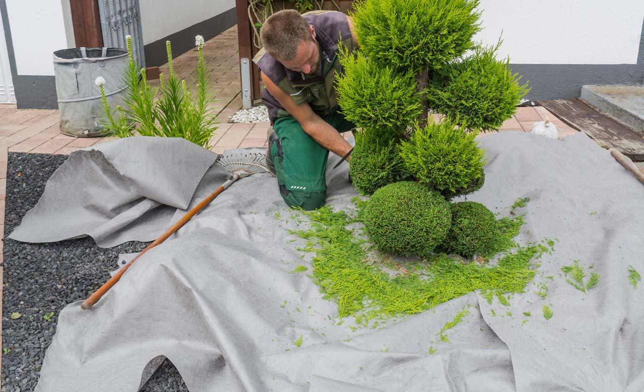 Gartenpflege Hagen Nordrhein-Westfalen