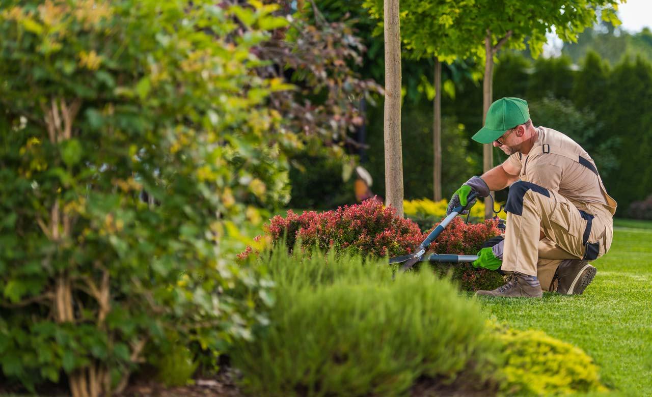 Gartenpflege Lauf an der Pegnitz Bayern