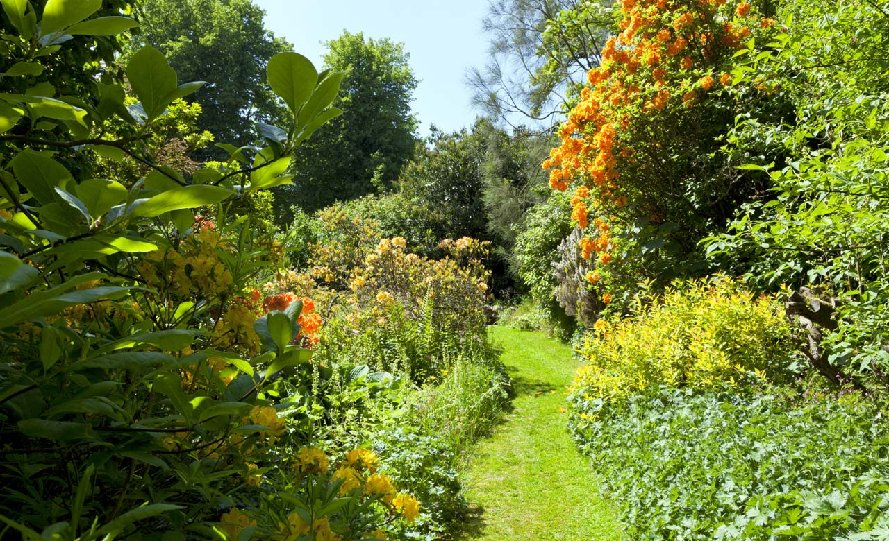Gartenbau Wangen im Allgäu Baden-Württemberg