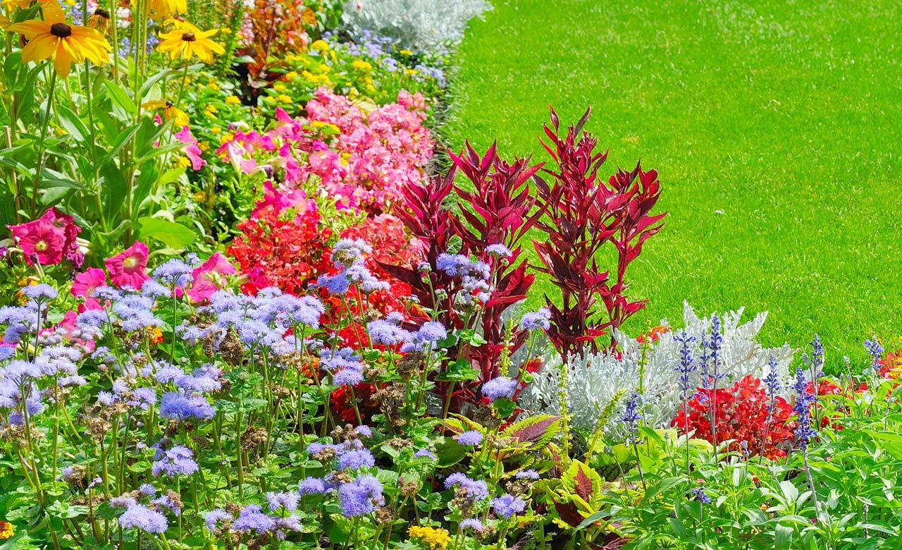 Gartengestaltung Ellwangen Baden-Württemberg