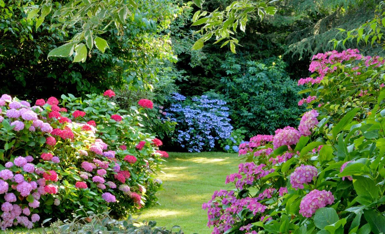 Gartengestaltung Ganderkesee Niedersachsen
