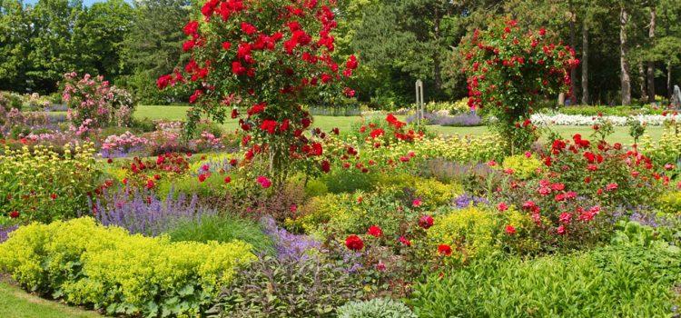 Gartengestaltung Hückelhoven Nordrhein-Westfalen