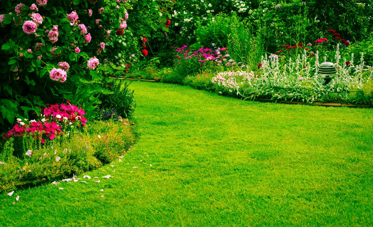 Gartengestaltung Kaarst Nordrhein-Westfalen