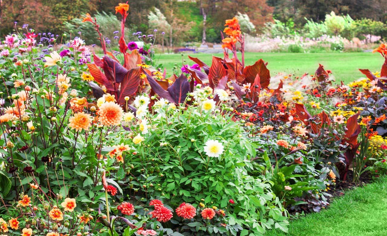 Gartengestaltung Leer Niedersachsen